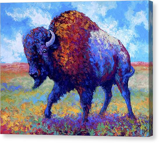 Bison Canvas Print - Good Medicine by Marion Rose