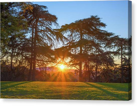 Good Morning, Good Morning Canvas Print