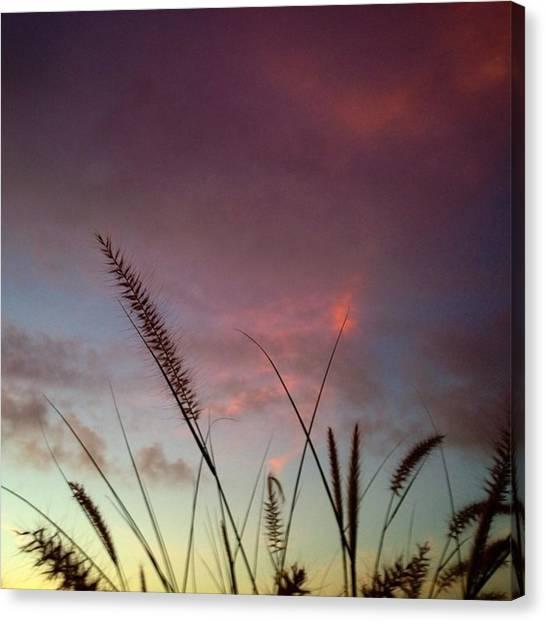 Florida Canvas Print - Good Morning! #juansilvaphotos #florida by Juan Silva