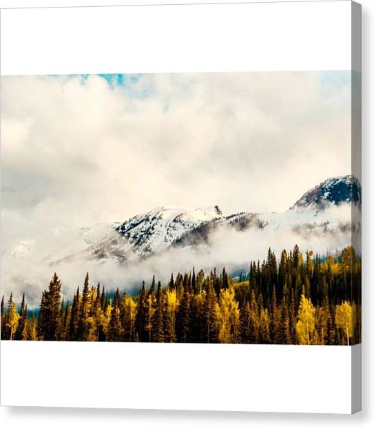 Scotty Canvas Print - Good Morning Kicking Horse ☁️🗻 by Scotty Brown