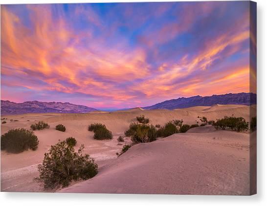 Mojave Desert Canvas Print - Good Morning by Peter Tellone