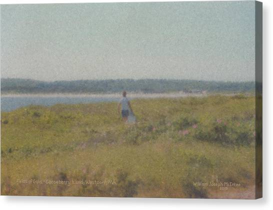 Gooseberry Island Westport Ma Canvas Print