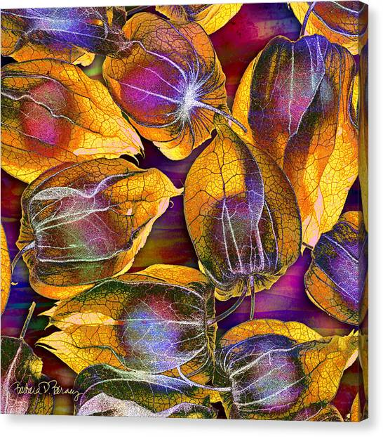Goosed Berry Pods Canvas Print