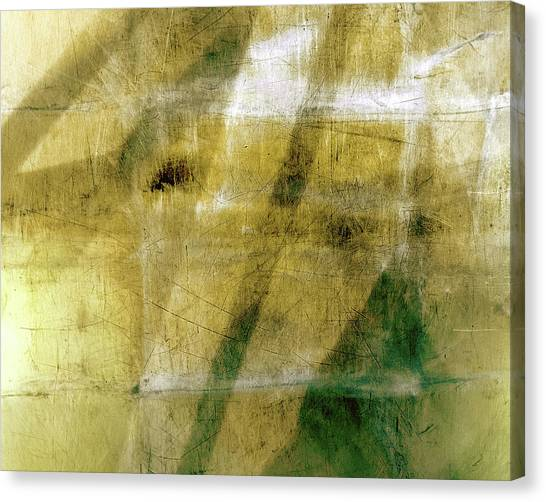 Goosehead Air Canvas Print