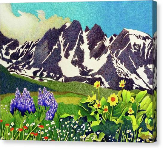 Gore Range Wildflowers Canvas Print