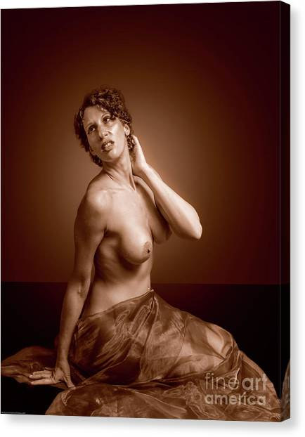 Gorgeous Nude. Canvas Print