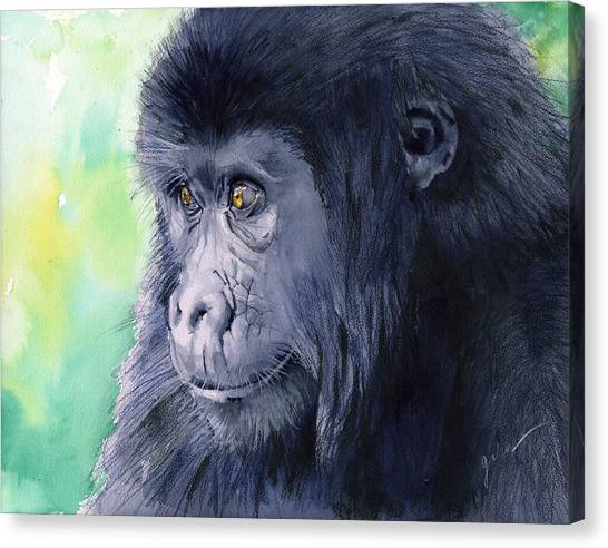 Monkeys Canvas Print - Gorilla by Galen Hazelhofer