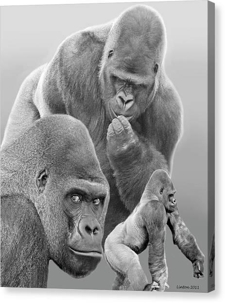 Gorilla Montage Canvas Print