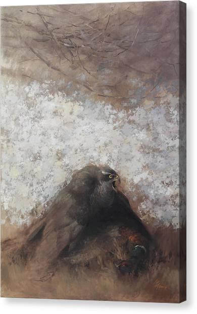 Goshawk And Pheasant Canvas Print