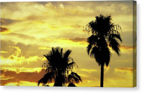 Canvas Print featuring the photograph Got To Love Monsoons by Elaine Malott