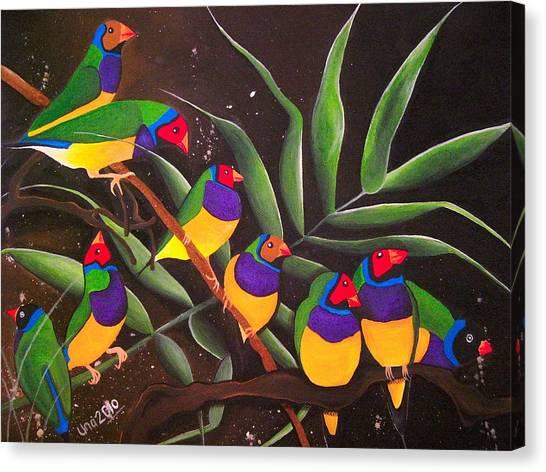 Gouldian Finch Rainbow Canvas Print by Una  Miller