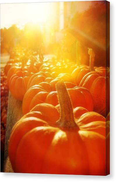 Gourds For Sale Canvas Print by JAMART Photography
