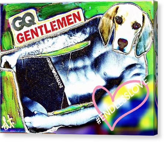 David Beckham Canvas Print - Gq Gentle Dog by Lisa Piper