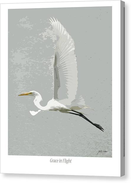 Grace In Flight Canvas Print