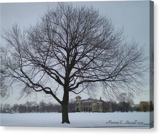 Graceful Tree And Belle Isle Eating Casino In Distance Canvas Print