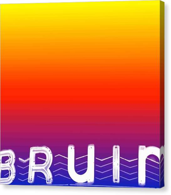 Ucla Canvas Print - Gradient Bruin By Mary Alexandra by Mary Alexandra Stiefvater