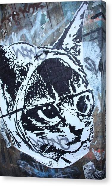 Graf Cat Canvas Print by Jez C Self