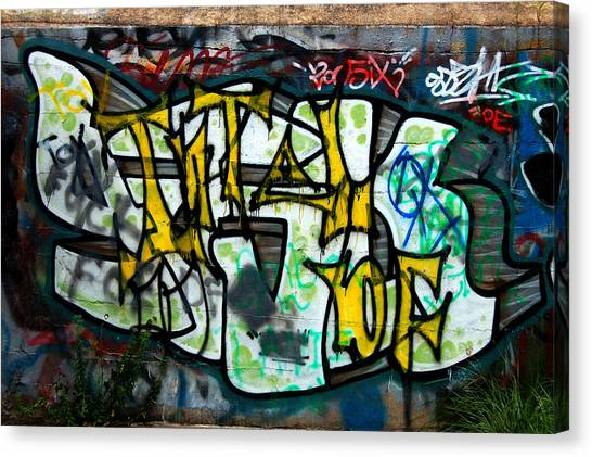 Graffiti Fort Armistead Baltimore Maryland Canvas Print by Wayne Higgs
