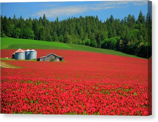 Grain Bins Barn Red Clover Canvas Print