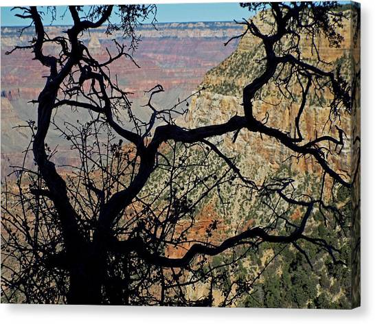 Grand Canyon 8 Canvas Print