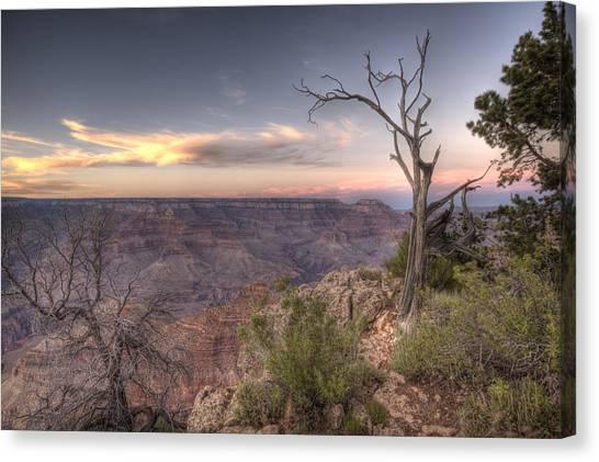 Grand Canyon 991 Canvas Print