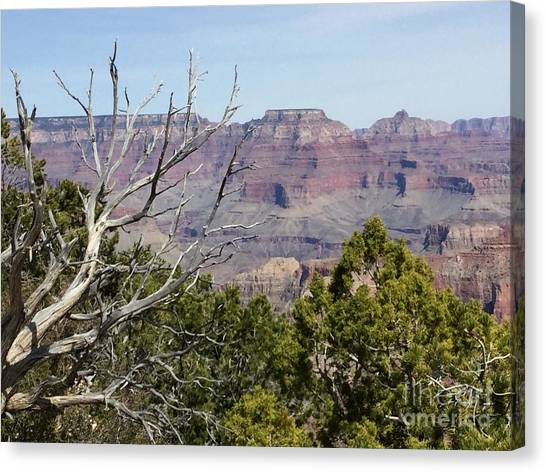 Grand Canyon National Park South Rim Canvas Print