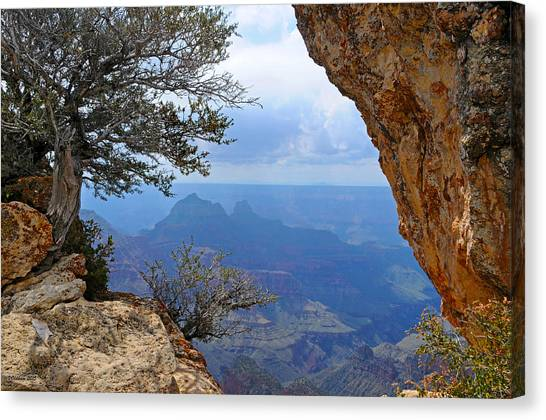 Grand Canyon North Rim Window In The Rock Canvas Print