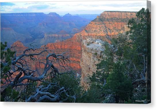 Grand Canyon South Rim - Red Hues At Sunset Canvas Print