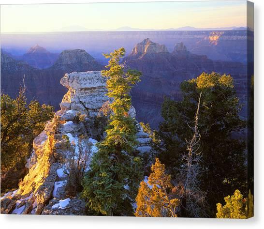Grand Canyon Sunrise Canvas Print by Johan Elzenga