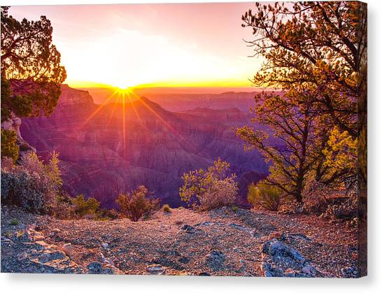 North Rim Canvas Print - Grand Canyon Sunrise by Scott McGuire