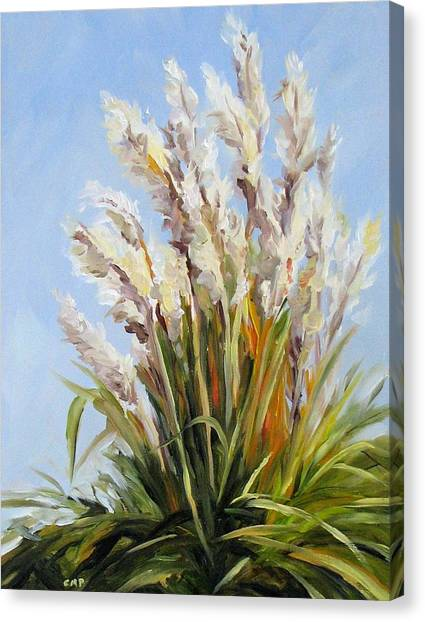 Grand Pampas Canvas Print by Cheryl Pass
