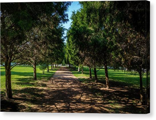Canvas Print featuring the photograph Grand Pathway - The Hermitage by James L Bartlett