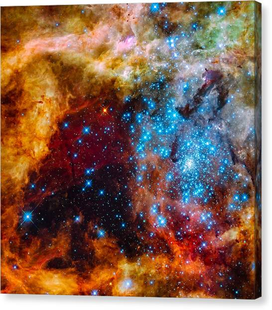 Grand Star-forming Region Canvas Print
