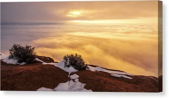 Shrub Canvas Print - Grand View Glow by Chad Dutson