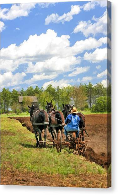 Grandpa Canvas Print - Grandpa And His Team Of Horses At Old World Wisconsin by Christopher Arndt