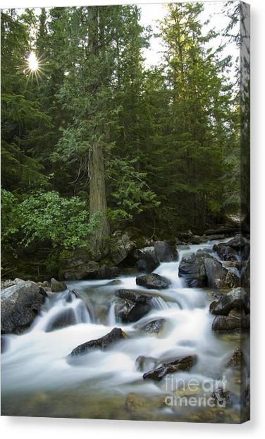 Granite Creek Canvas Print