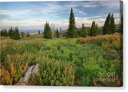 Boise National Forest Canvas Print - Granite Mountain View by Idaho Scenic Images Linda Lantzy