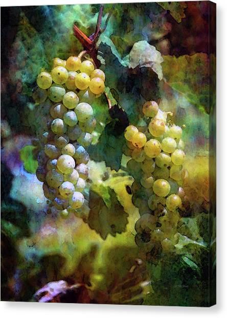 Grape Prism 2739 Idp_2 Canvas Print