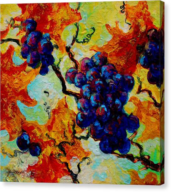 Wine Country Canvas Print - Grapes Mini by Marion Rose