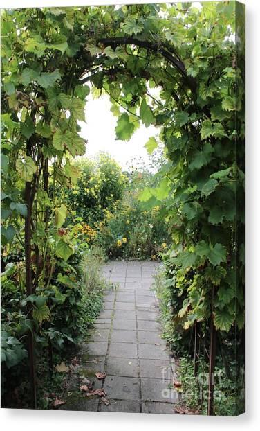 Pavers Canvas Print - Grapevine Arch In Garden by Carol Groenen