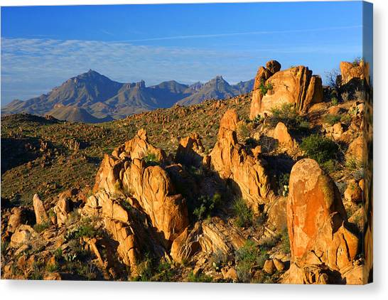 Grapevine Hills Canvas Print