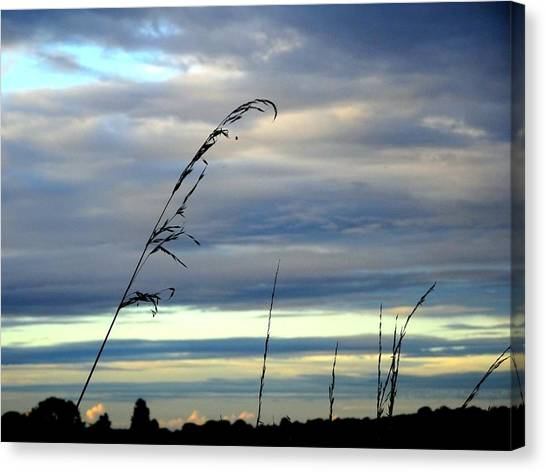 Grass Against Abstract Sky Canvas Print