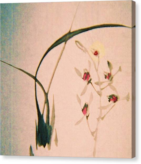 Grass And Buds Canvas Print by JuneFelicia Bennett