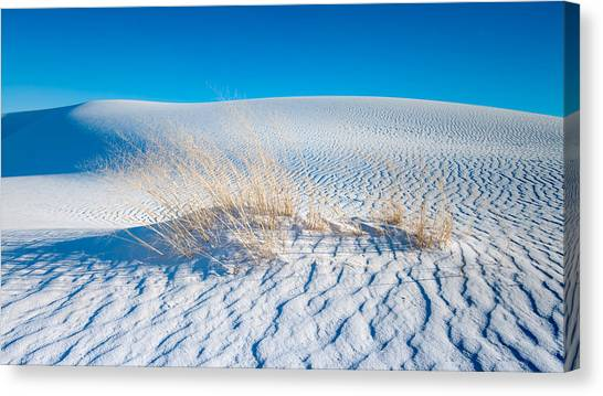 White Sand Canvas Print - Grass And Dunes by Joseph Smith