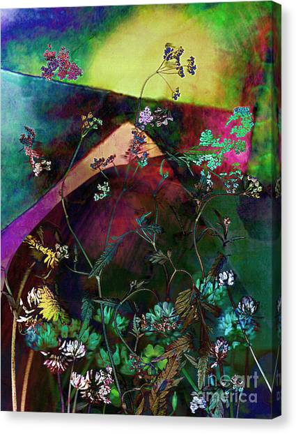 Grassland Series No. 6 Canvas Print by Vinson Krehbiel