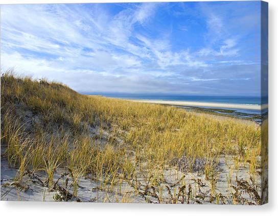 Grassy Sand Dunes Overlooking The Beach Canvas Print