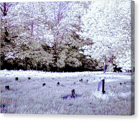 Ohio University Canvas Print - Graveyard At The Ridges In Athens by Bob LaForce