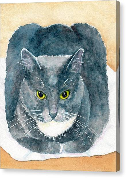 Purebred Canvas Print - Gray And White Cat With Green Eyes by Carlin Blahnik CarlinArtWatercolor