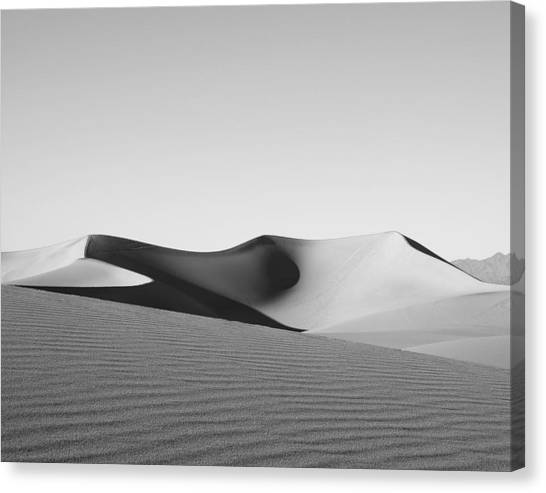 Gray Canvas Print