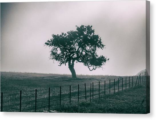 Gray Sky Morning Canvas Print